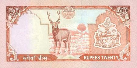 Nepalese Rupee NPR Definition | MyPivots