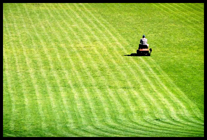 Lawnmower on large lawn.